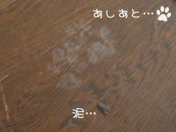 050329b.jpg