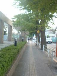 SN3D0004.jpg