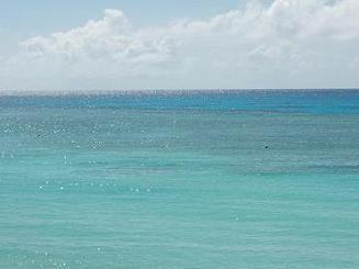 ニシ浜キラキラ