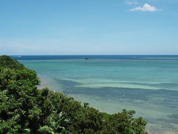 森と海(西表島)