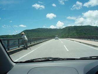 西表島をドライブ!
