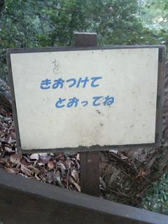 201001171545000.jpg