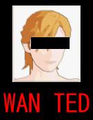 WAN TED2