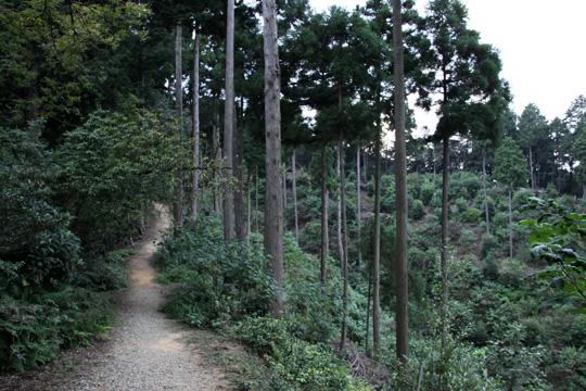 20090921_sekigahara-05.jpg