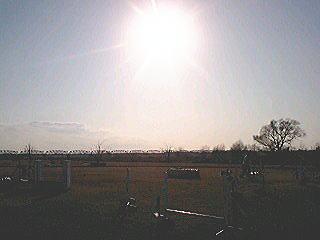 20080211tenryu1.jpg