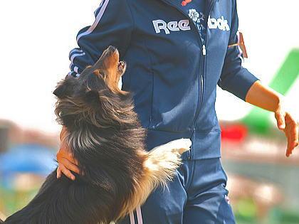 20080406oosakabyaru.jpg