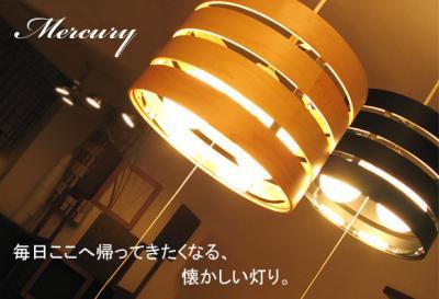 mercury1_convert_20090414155001.jpg