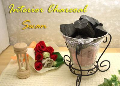 swan_convert_20090411102003.jpg