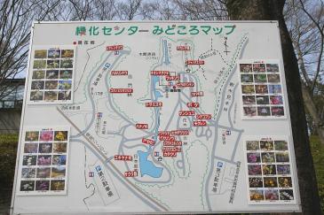 豊田市 緑化センター 園内花地図