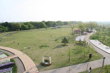 江南市 フラワーパーク江南 芝生広場