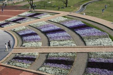 江南市 フラワーパーク江南 池の前の花