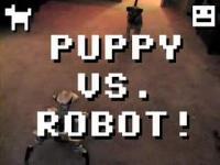 子犬 VS ロボット