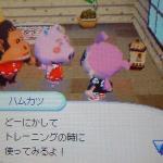 hamuta3.jpg