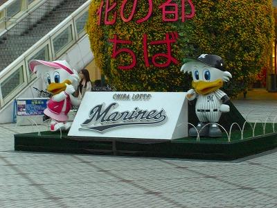 marine (2)