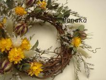 ヘリクリサム黄色リース