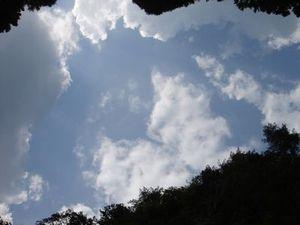 20060817133611.jpg
