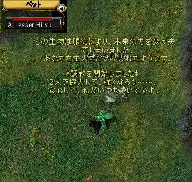 20080526-002u