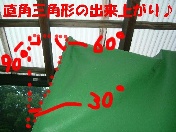 DSCF5511.jpg
