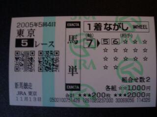 20051113201324.jpg