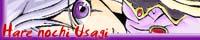 banner_hareusa.jpg