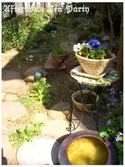ガーデニング 初春の庭 全体
