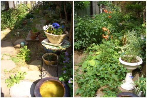 ガーデニング 春の庭夏の庭 南側