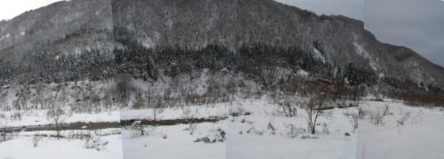 新潟 雪景色 川べり