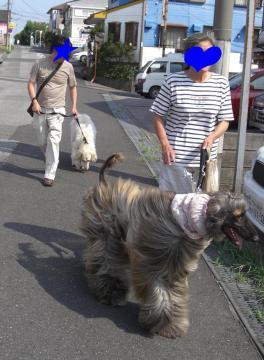 アグリ君お散歩 2008.08
