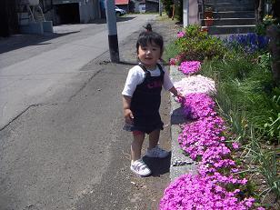 20060527091137.jpg