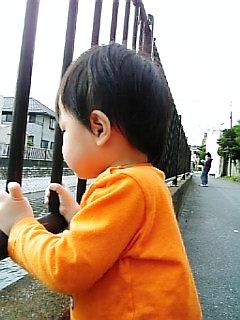 Image2001.jpg