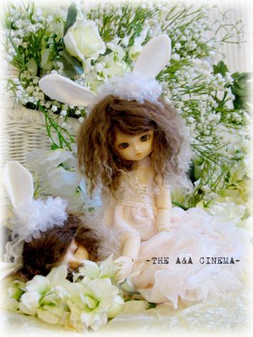 白いお花と。