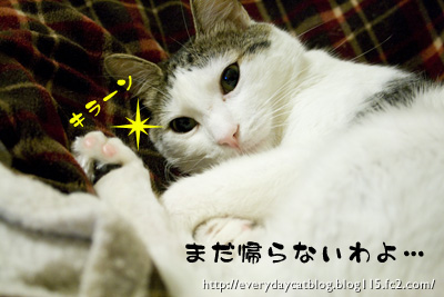 _MG_9785.jpg