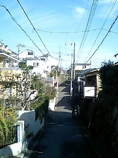 20081211123243