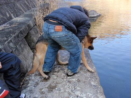 川に落とされそうになるボン君