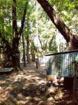 梅ヶ丘公園