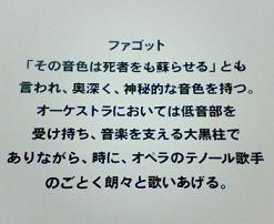 NEC_0472.jpg