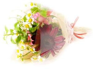 flower14_300x225.jpg
