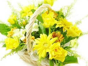 flower23-2_300x225.jpg