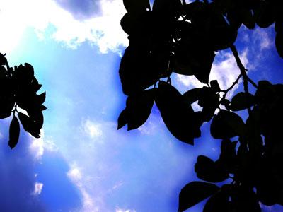 sky.141.jpg