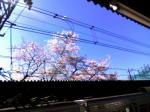 2006.04.03 09:36 柴崎