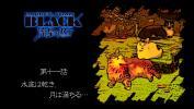 2BLACK 11-3