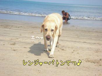 2007-11-03-1.jpg