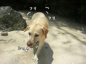 2007-11-03-6.jpg