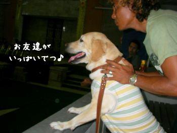 2007-11-04-2.jpg