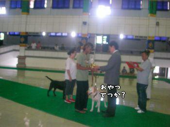 2007-11-04-6.jpg