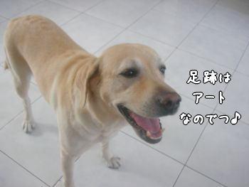 2007-11-08-2.jpg