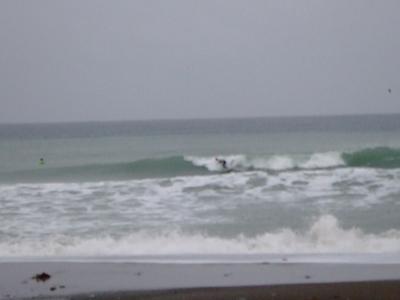 the gane2008 oohara p2