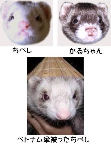 YU-TA家ちぺかる0521A