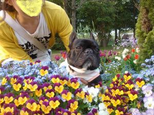 お花とパチリ♪