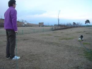 大好きボール